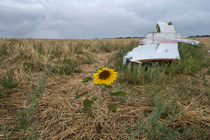 A sunflower is pictured near a piece of wreckage of the downed Malaysia Airlines flight MH17, near the village of Hrabove (Grabovo) in Donetsk region, eastern Ukraine September 9, 2014 (Reuters / Marko Djurica)