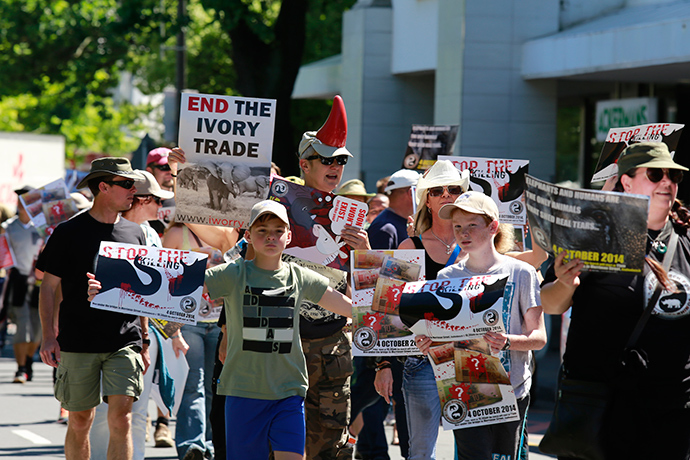 People carrying placards calling for the end to the ivory trade walk through the streets of Stellenbosch during the Global March for Elephants and Rhinos in Cape Town on October 4, 2014 (AFP Photo / Jennifer Bruce)