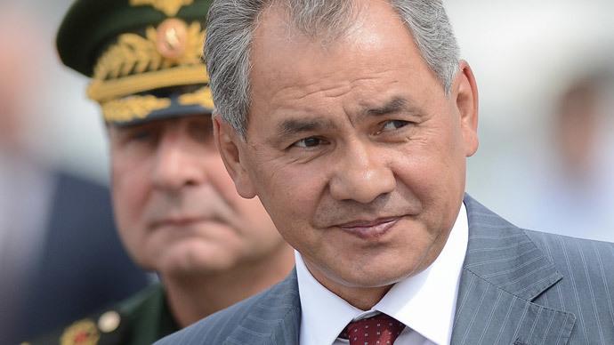 Defense Minister Sergei Shoigu (RIA Novosti / Ramil Sitdikov)