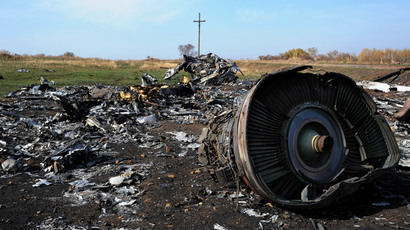 Aussie PM owes Putin an apology over MH17 blame game – senior MP