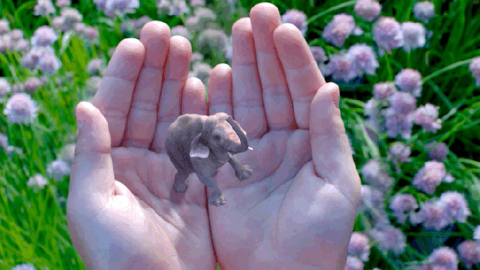 Elephant in your room: Google takes Magic Leap into virtual reality
