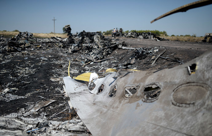 A part of the Malaysia Airlines Flight MH17 at the crash site in the village of Hrabove (Grabovo), some 80km east of Donetsk, on August 2, 2014. (AFP Photo / Bulent Kilic)