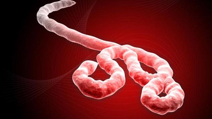 Ebola.com sold to medical pot company for $200,000