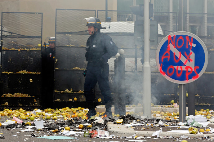 French police officer stands amongst apples thrown by French farmers during a demonstration in Marseille, November 5, 2014.(Reuters / Jean-Paul Pelissier)