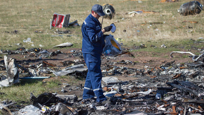 An Emergencies Ministry member searches for belongings at the site where the downed Malaysia Airlines flight MH17 crashed, near the village of Grabovo in Donetsk region, eastern Ukraine, October 13, 2014.(Reuters / Shamil Zhumatov)