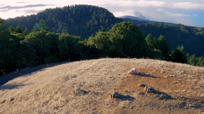 'Drone Boning': World's first drone porn film neither first, nor porn