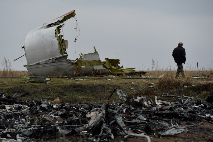 A man on the crash site of the MH 17 Malaysian Boeing that was en route from Amsterdam to Kuala Lumpur. (RIA Novosti / Alexey Kudenko)