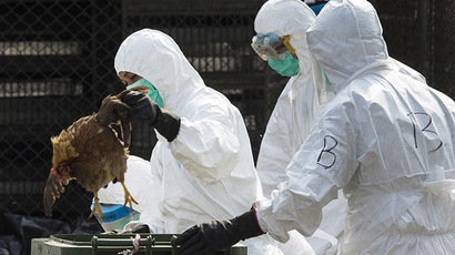 Bird Flu discovered on Yorkshire farm – health risk low