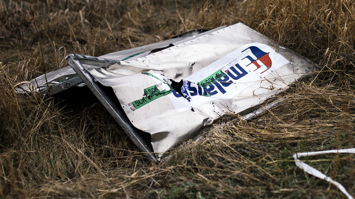 A picture taken on November 7, 2014, shows a part of the Malaysia Airlines Flight MH17 at the crash site in the village of Hrabove (Grabovo), some 80km east of Donetsk. (AFP Photo/Dmitar Dilkoff)