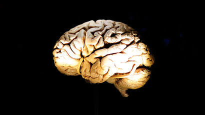Losing their minds: 100 brains go 'missing' from University of Texas