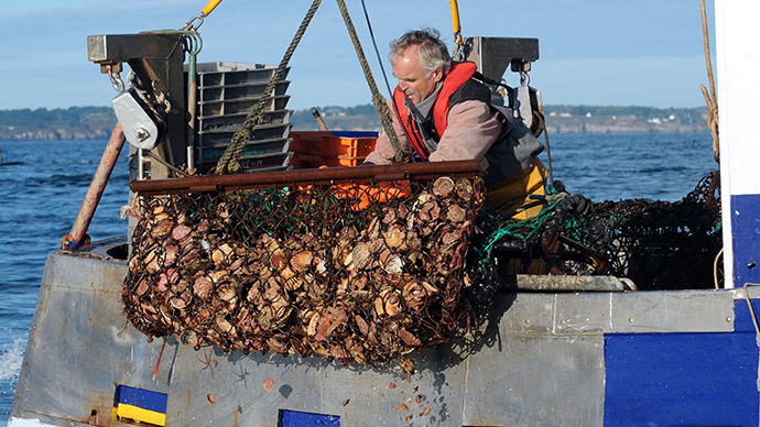 Tour de scallops: French sea products travel to China for cleaning, and then back