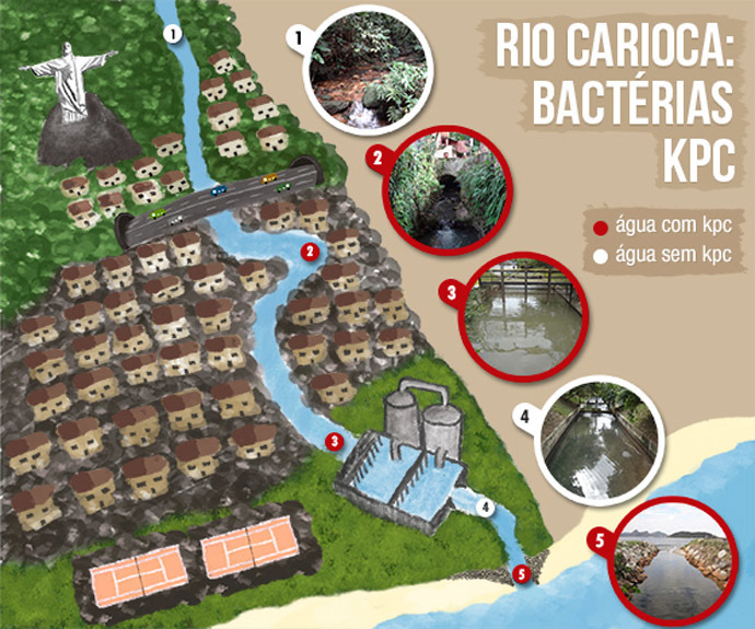 Places marked in red show where superbug was detected (screenshot from www.fiocruz.br)