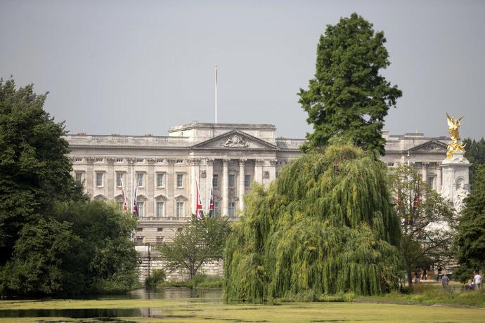 Buckingham Palace (AFP Photo/Justin Tallis)
