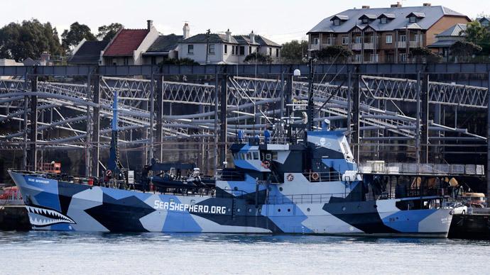 The Sea Shepherd vessel, Bob Barker, is moored in Sydney Harbour.(Reuters / Tim Wimborne)
