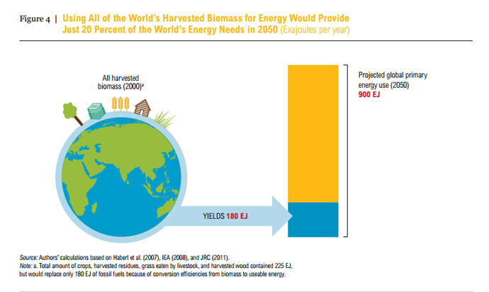 "Image from the report ""Avoiding bioenergy competition for food crops and land"""