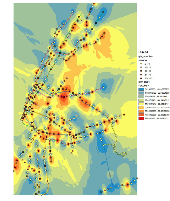 Heatmap of the Pseudomonas genus, the most abundant genus found across the city. Hotspots are found in areas of high station density and traffic (i.e. lower Manhattan and parts of Brooklyn).
