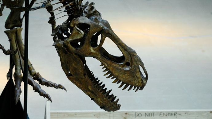 Tripping dinosaurs? Oldest-ever grass evolved along with fungus used in LSD