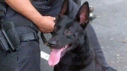 NJ man dies in custody after police beat and sic dog on him