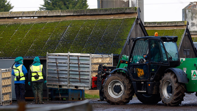 'Stark choice': Britain will import 50% of food by 2040, farmers union warns
