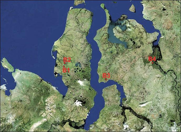 Four arctic craters: B1 - famous Yamal hole in 30 kilometres from Bovanenkovo, B2 - recently detected crater in 10 kilometres to the south from Bovanenkovo, B3 - crater located in 90 kilometres from Antipayuta village, B4 - crater located near Nosok village, on the north of Krasnoyarsk region, near Taimyr Peninsula. (The Siberian Times/Vasily Bogoyavlensky)