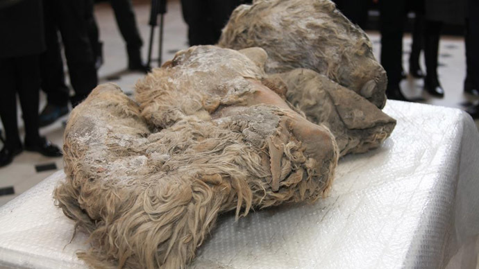 "The remains of ""Sasha"" were found last September (Image from www.ysia.ru)"