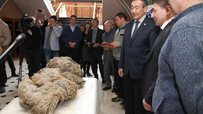The finding was presented to the Russian Academy of Science of Sakha Republic (Image from www.ysia.ru)