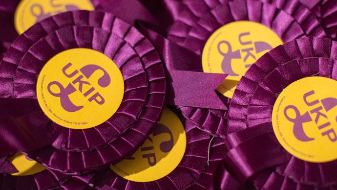 Mother accuses UKIP ex-husband of racist, homophobic 'brainwashing' of kids