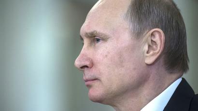President Vladimir Putin (RIA Novosti/Sergey Guneev)