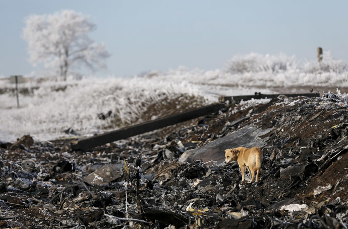 The site where MH17, a Malaysia Airlines Boeing 777 plane, crashed near the village of Hrabove (Grabovo) in Donetsk region, December 15, 2014. (Reuters / Maxim Shemetov)