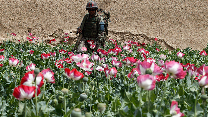 30% of Afghan security forces involved in drug trade – Russian narcotics watchdog