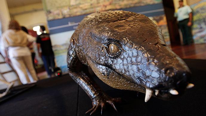 A model of the carnivorous dinosaur called the Armadillosuchus arrudai (Reuters / Bruno Domingos)
