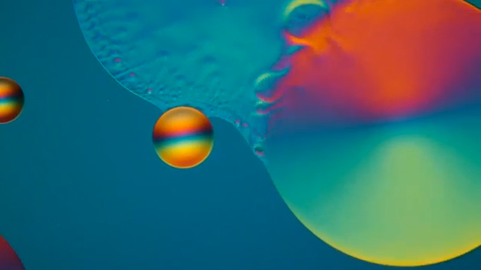 Dazzling photomicrography revealed in Nikon's annual contest (VIDEO)