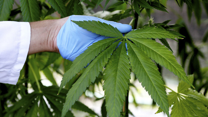 Italian army growing cannabis to slash end user prices