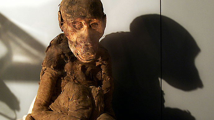 Missing mummies: Hundreds of ancient Egyptian animals remains prove to be empty inside