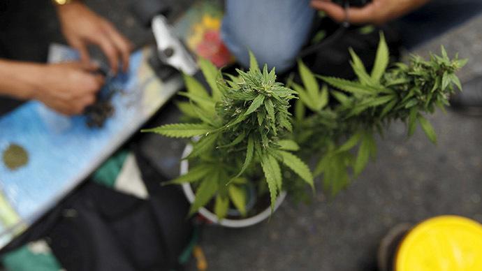 Medical marijuana falls short of easing symptoms of dementia – study