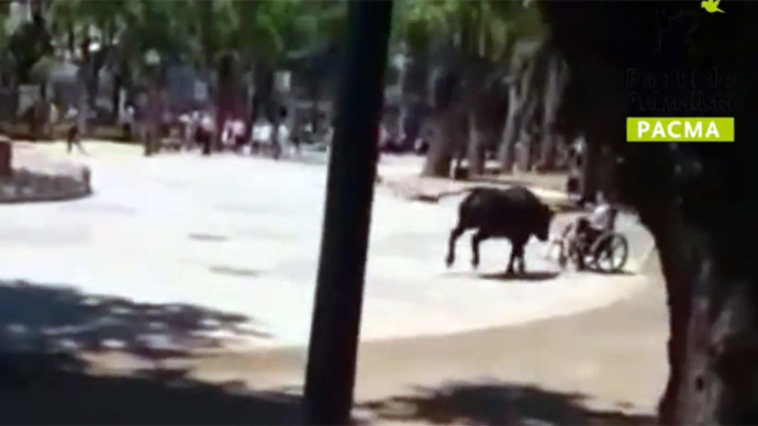 Mad, bad & dangerous: Bull escapes arena in Spain, injures 11 (VIDEO)