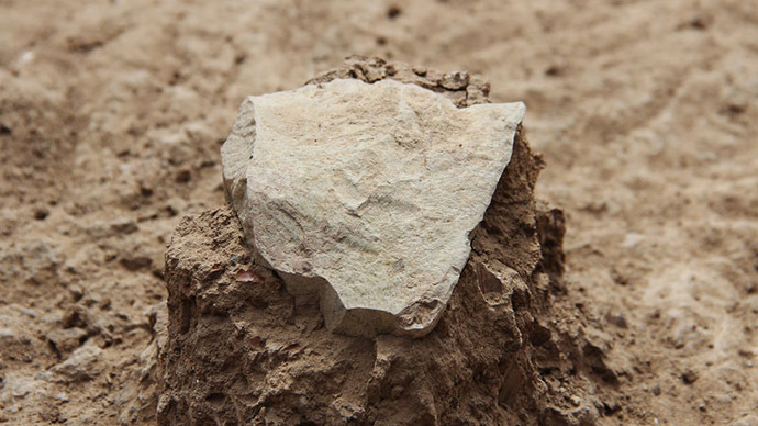 'Predate humans': Stone tools made 3.3mn years ago found in Kenya