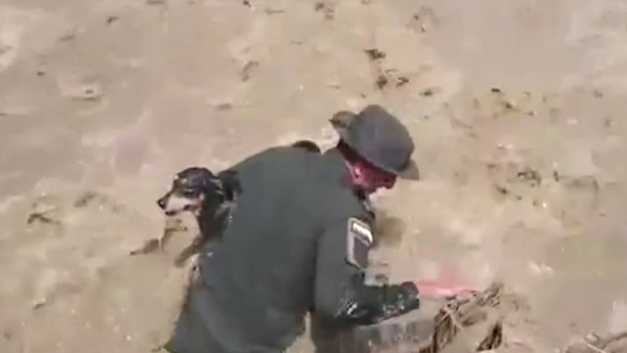 Bark to life: Colombian cops rescue dog from mudslide, perform mouth-to-mouth (VIDEO)