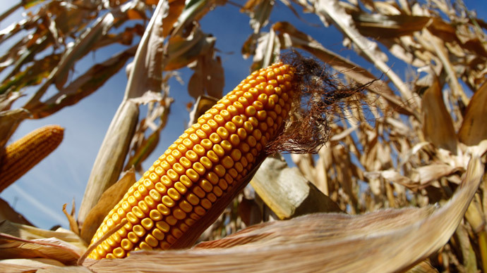 Nationalists ponder prison sentences for selling unmarked GMO products