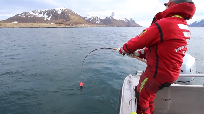 Screenshot from YouTube video by NordicSeaAngling