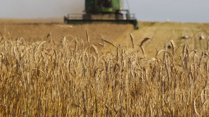 Russia begins grain deliveries to Iran  – Russian food watchdog
