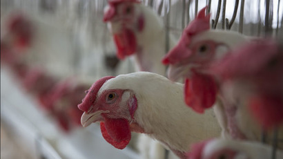 Russia halts transit of US poultry - food safety watchdog