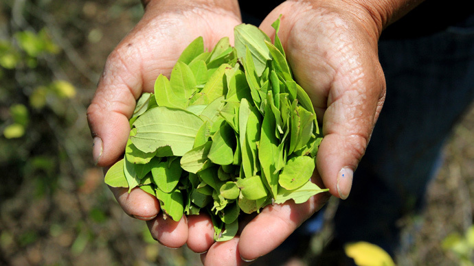 Pope Francis to chew coca leaves during visit to Bolivia – minister