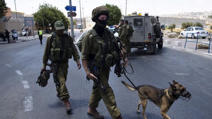 'Counter to basic human morality': Rights group slams IDF commander for killing Palestinian