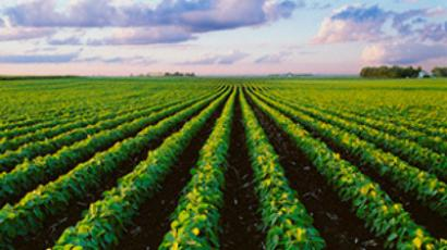 New farming project to revive Russian agriculture