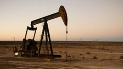 Alliance Oil posts 1H 2010 net profit of $79.6 million