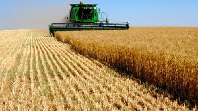 Black Earth Farming posts 1Q 2011 net loss of 448.1 million roubles