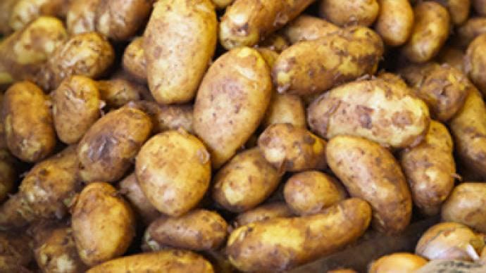 Potato shortage to stem from drought