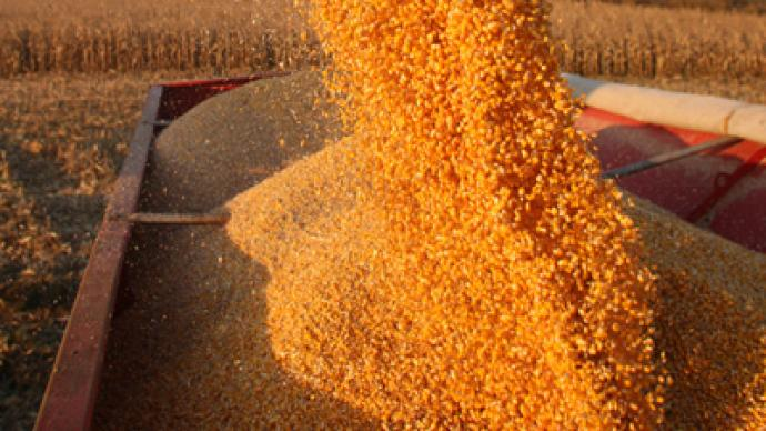Russia's grain exports might be tarriffed since April