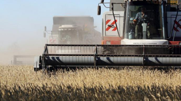 Russia's grain has its own future(s)